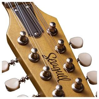 Seagull Guitars S8 Mandolin Natural SG