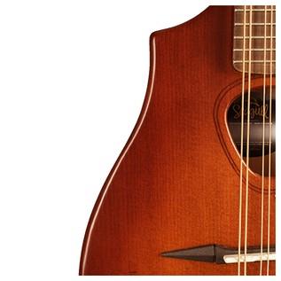Seagull Guitars S8 Mandolin Burnt Umber SG