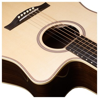 Seagull Guitars Artist Studio CW Element with DLX TRIC