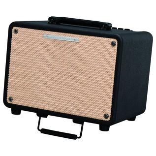 Ibanez T30 Troubadour 30W Acoustic Guitar Combo Amp
