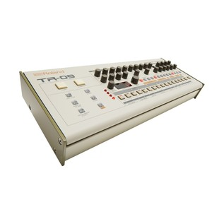 Roland Boutique TR-09 Module with K-25m Keyboard - Synth Angled