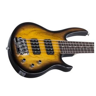 Gibson EB T 5 String Bass Guitar, Sunburst