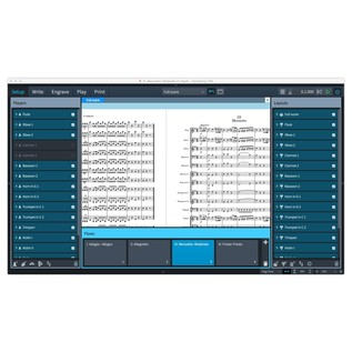 Steinberg Dorico Scoring Software - Screenshot 5
