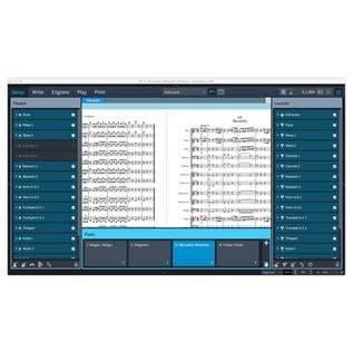 Steinberg Dorico Scoring Software, Crossgrade - Screenshot 5