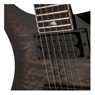 PRS SE Mark Holcomb Pickups