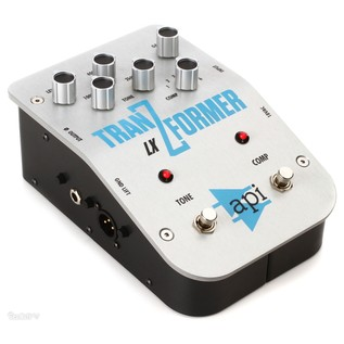 API TranZformer LX Bass Pedal - Angled 2