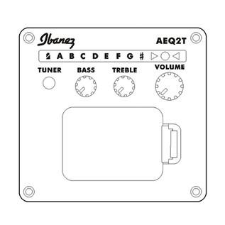 Ibanez TCY10E-AVS Electro Acoustic Guitar