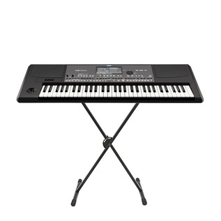 Korg PA600 Arranger Keyboard with Free Stand