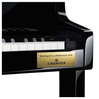 Casio Celviano GP-300 Badge