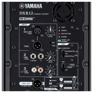 DXR12 Loudspeaker panel