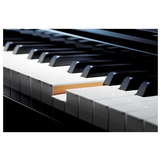 Casio Celviano Grand Hybrid Digital Piano Keyboard