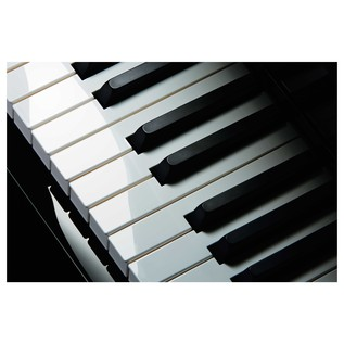 Casio Celviano Grand Hybrid Digital Piano Keyboard Top View