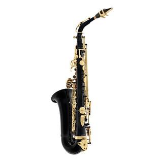 Elkhart 100AS Student Alto Saxophone, Black