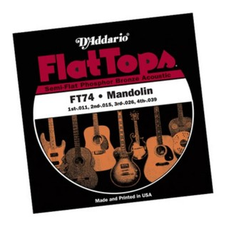 D'Addario FT74 Flat Tops Phosphor Bronze 11-39 Mandolin Strings