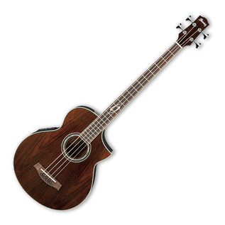 Ibanez EWB20WNE Exotic Wood Electro Acoustic Guitar, Natural