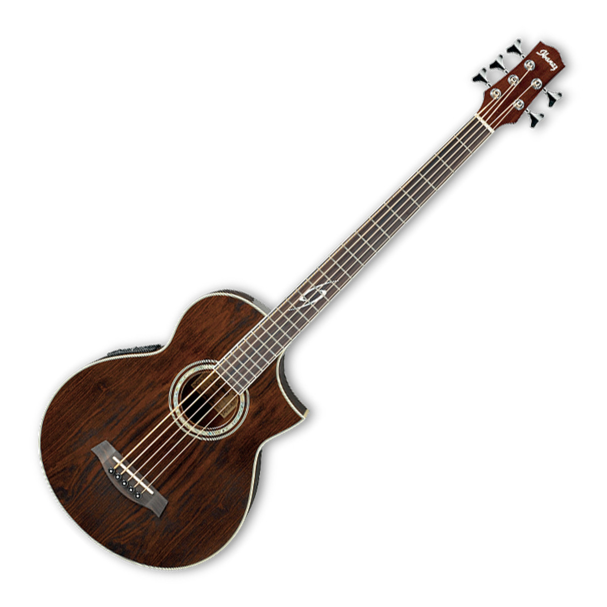 ibanez ewb205wne exotic electro acoustic 5 string bass guitar at. Black Bedroom Furniture Sets. Home Design Ideas