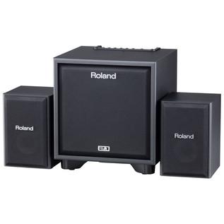 Roland CM110 Instrument Amp - main