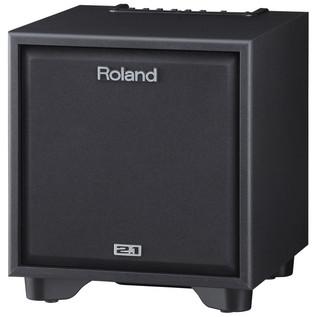 Roland CM110 Instrument Amp - sub