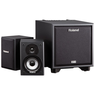 Roland CM110 Instrument Amp - angle speaker