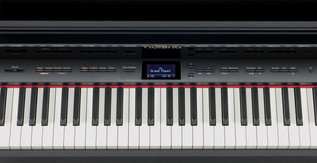 Roland LX-10F SuperNATURAL Digital Piano, Satin Black - panel
