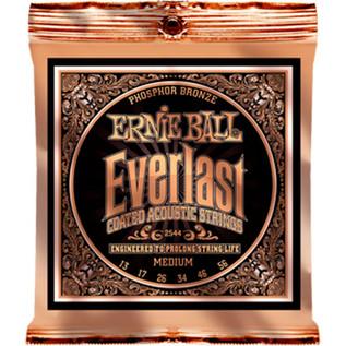 Ernie Ball Everlast 2544 Phosphor Acoustic Guitar Strings 13-56
