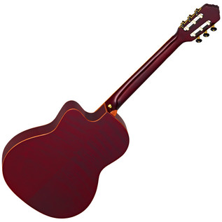 Ortega FDSM Frank Dellé Signature Electro Classical Guitar, Spruce Rear