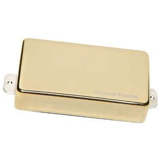 Seymour Duncan AHB-1 Neck Blackouts, Gold