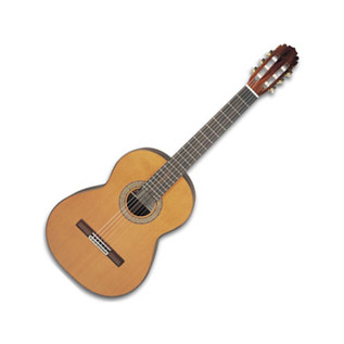 Manuel Rodriguez Pro Guitar + Case