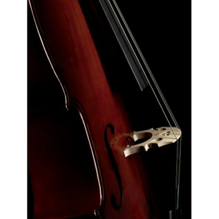 Fishman C-200 Concert Series Cello Pickup