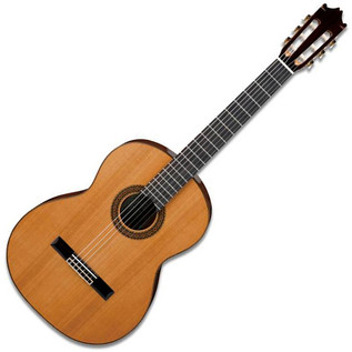 Ibanez G300 Classical Acoustic Guitar, Natural