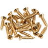 Fender Pickguard/Control Plate Mounting Screws, 24, Gold