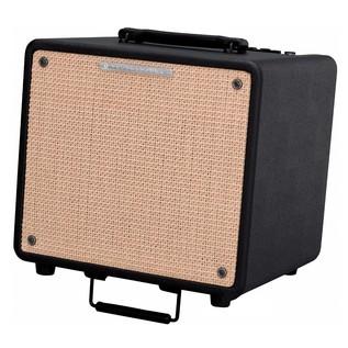 Ibanez T80N Troubadour 80 Watts Acoustic Guitar Combo Amp