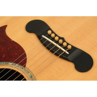 Planet Waves Boxwood Bridge Pins with End Pin Set