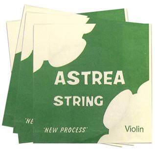 Astrea Violin D String (1/8-1/16)