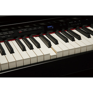 Roland DP-90S Digital Piano, Polished Ebony