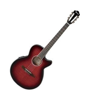 Ibanez AEG24NII-THS Acoustic Guitar