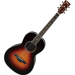 Ibanez AVN1-BS Acoustic Guitar