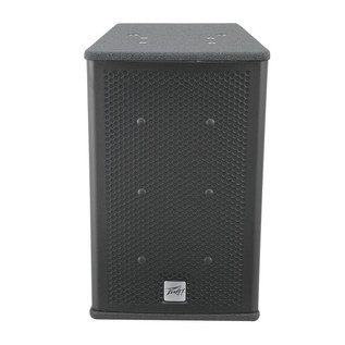Peavey Elements 108C Weatherproof Loudspeaker