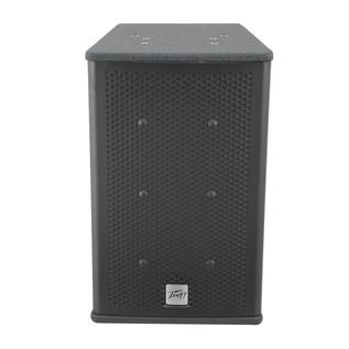 Peavey Elements 108C Weatherproof Loudspeaker