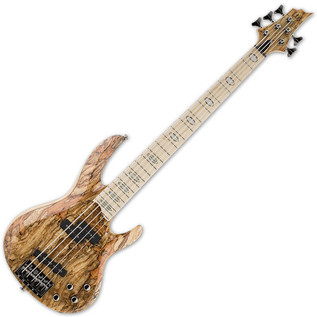 ESP LTD RB-1005SM 5-String Bass Guitar, Natural