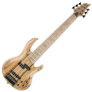 ESP LTD RB-1006SM 6-String Bass Guitar, Natural