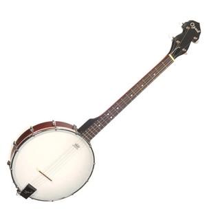 Ozark 2102T Tenor Banjo, with Gig Bag