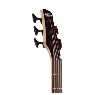 GIO GSR205B 5-String Bass Guitar, Walnut Flat