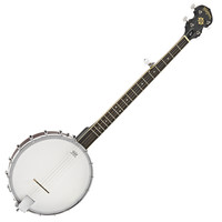 Washburn B7 5 String Banjo Open Back