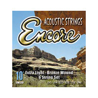 Encore Acoustic Guitar 12 String Set