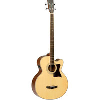 Tanglewood TW155 A Acoustic Bass